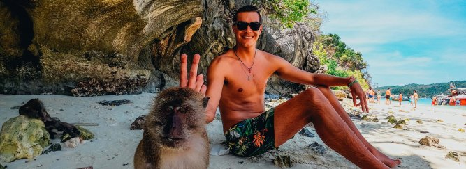 Guy sitting on Beach with Monkey giving Peace Sign on Monkey Beach Koh Phi Phi Thailand