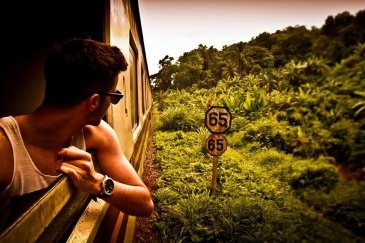 A guy on a train going through lush greenery looking at the view from the window