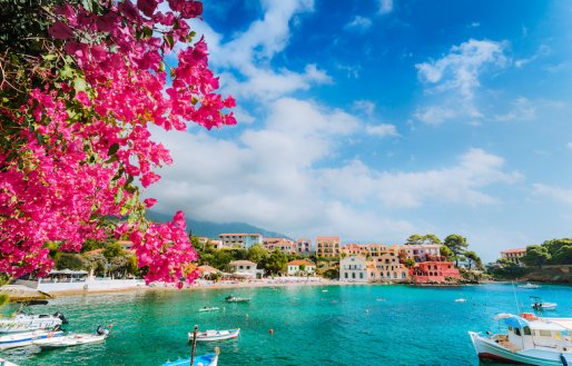 Beautiful coast of Kassiopi in Greece showing turquoise clear water, small boats  and a tree with magenta flowers