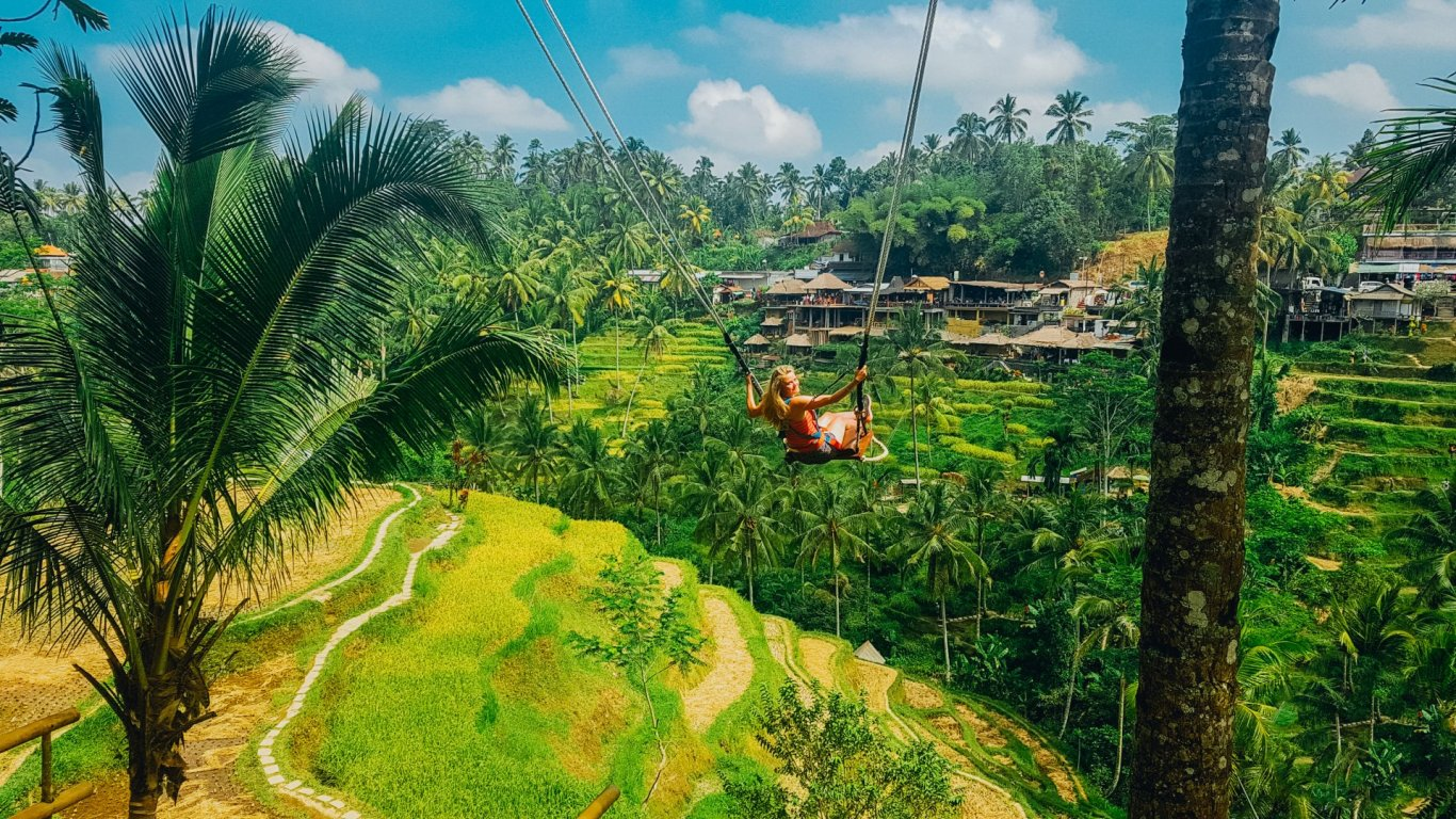 Girl on swing at rice terraces in Ubud
