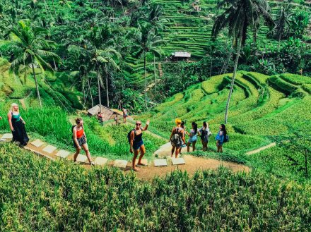 people walking through rice terrace in Ubud Bali