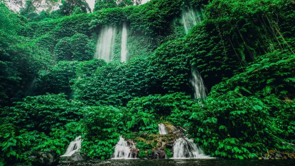 Green trees with waterfall running down in Lombok Indonesia