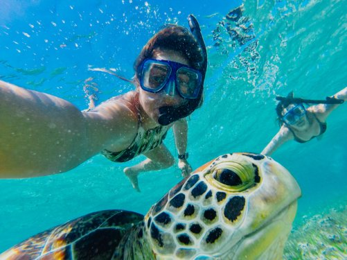 girl underwater snrokelling with turtle