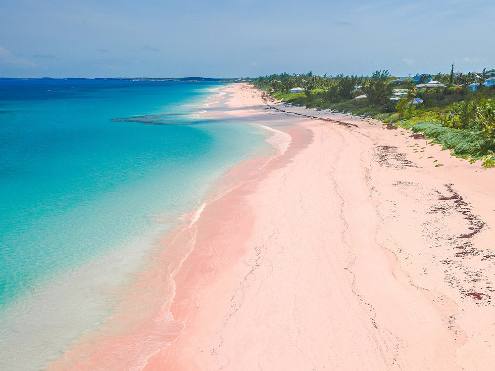 Island Hopping Indonesia- Pink Beach
