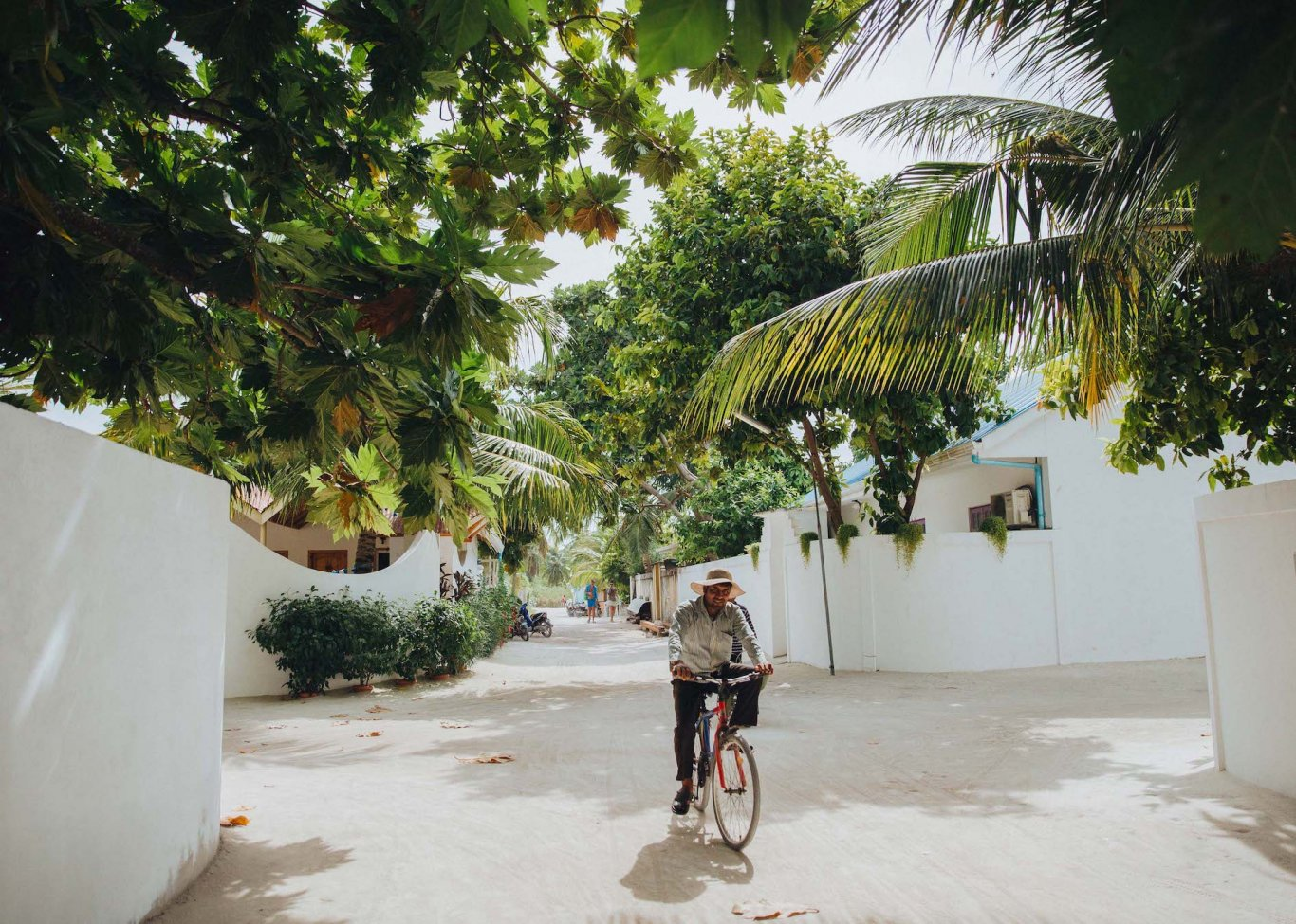 A shot of someone cycling surrounded by lush greenery and palm trees in the Maldives