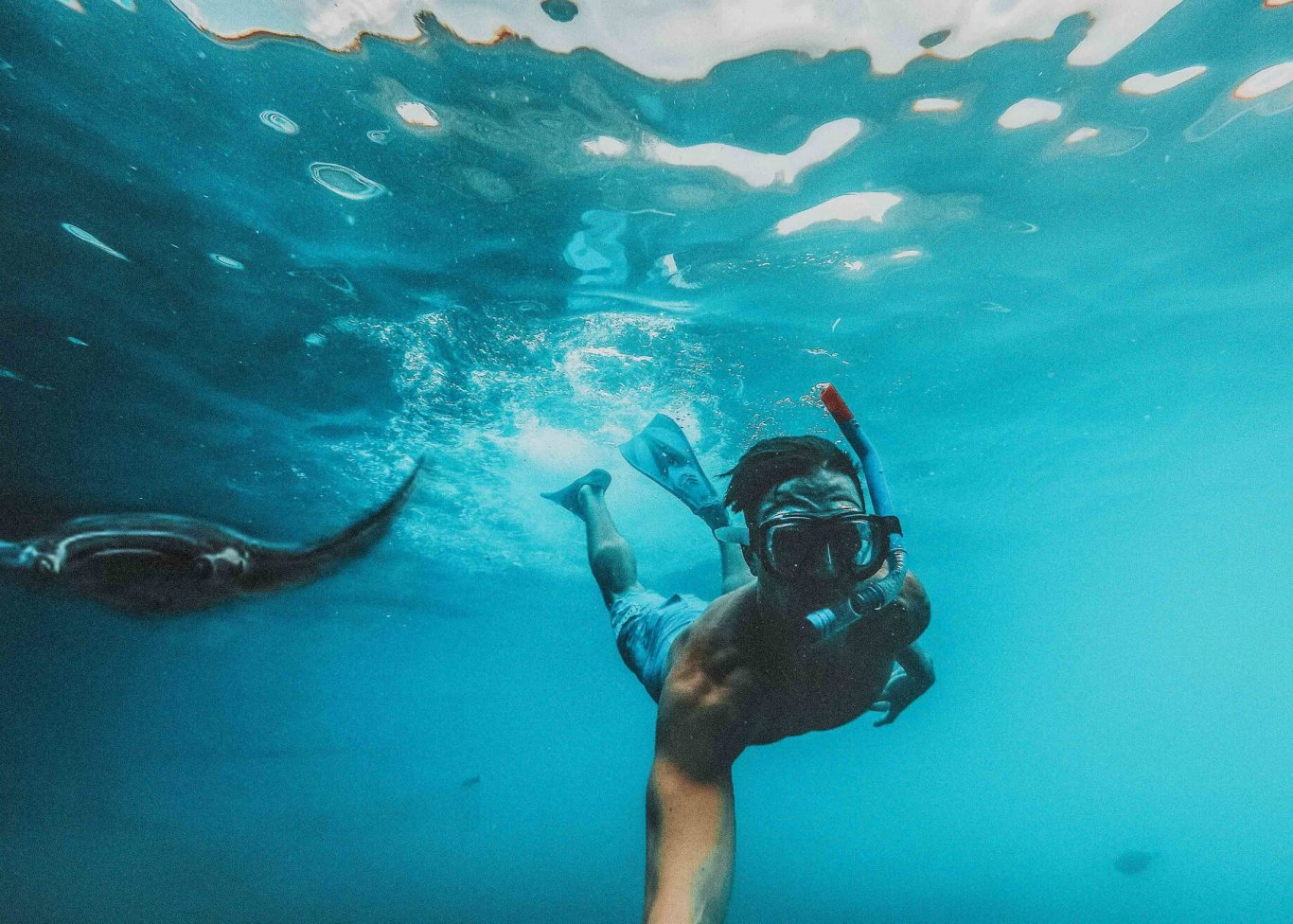 An underwater selfie of someone snorkelling with Manta rays in the bright blue ocean in the Maldives