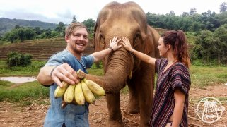 volunteering at elephant sanctuary couple