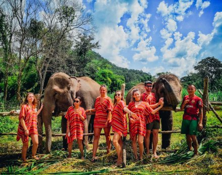 A group photo with the elephants in Chiang Mai Thailand