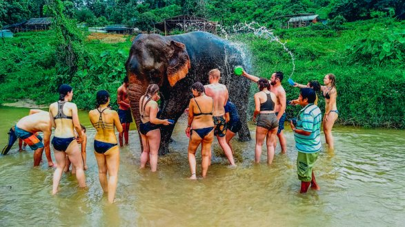 A photo of an elephant being bathed in Chiang Mai Thailand