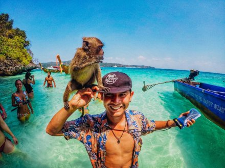 Amazing photo of a monkey sitting on a mans hand in Koh Phi Phi Thailand
