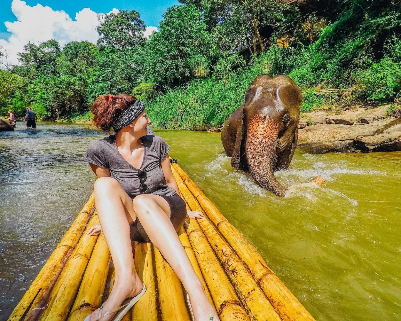 Elephant in river - Northern Thailand